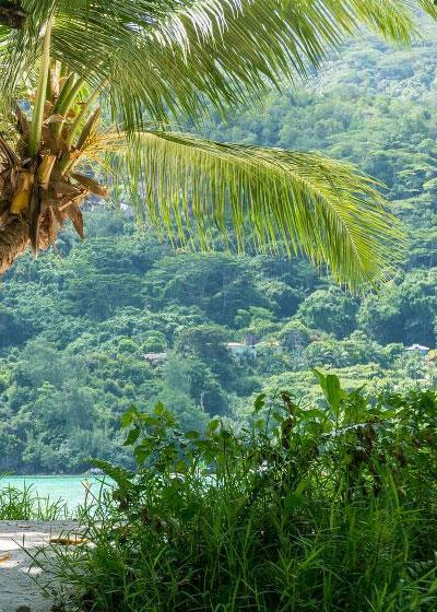 How To Be An Eco Friendly Tourist In Seychelles